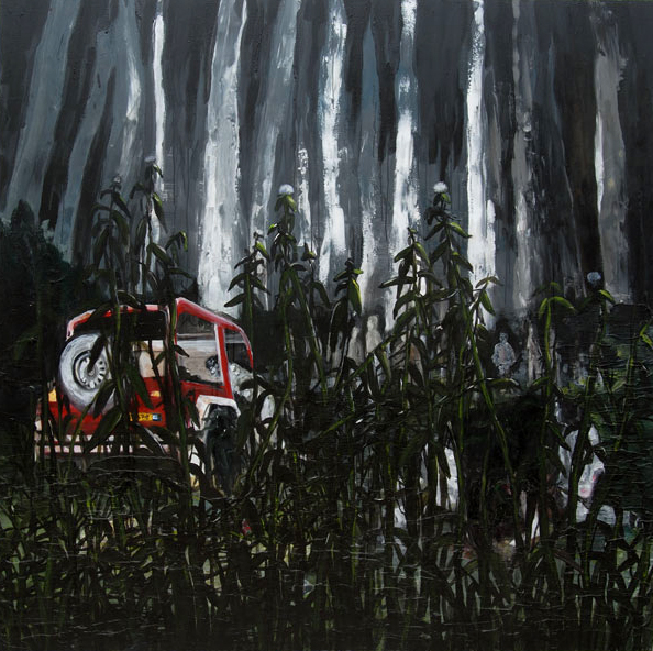 ecaliptus forest